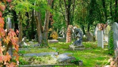 cemetery-2796619_960_720